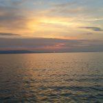 Nyári hajnal a vízen MOHOSZ Szepezdfürdői Horgásztanya