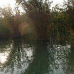 Pontyok rejteke MOHOSZ Szepezdfürdői Horgásztanya