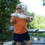 MOHOSZ Szepezdfürdői Horgásztanyán fogott süllő