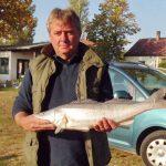 2012 10. 22. 2400 gr. MOHOSZ Szepezdfürdői Horgásztanyán fogott süllő