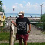 MOHOSZ Szepezdfürdői Horgásztanyán fogott harcsa