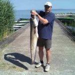 2011 05. 30. 11900 gr. MOHOSZ Szepezdfürdői Horgásztanyán fogott harcsa
